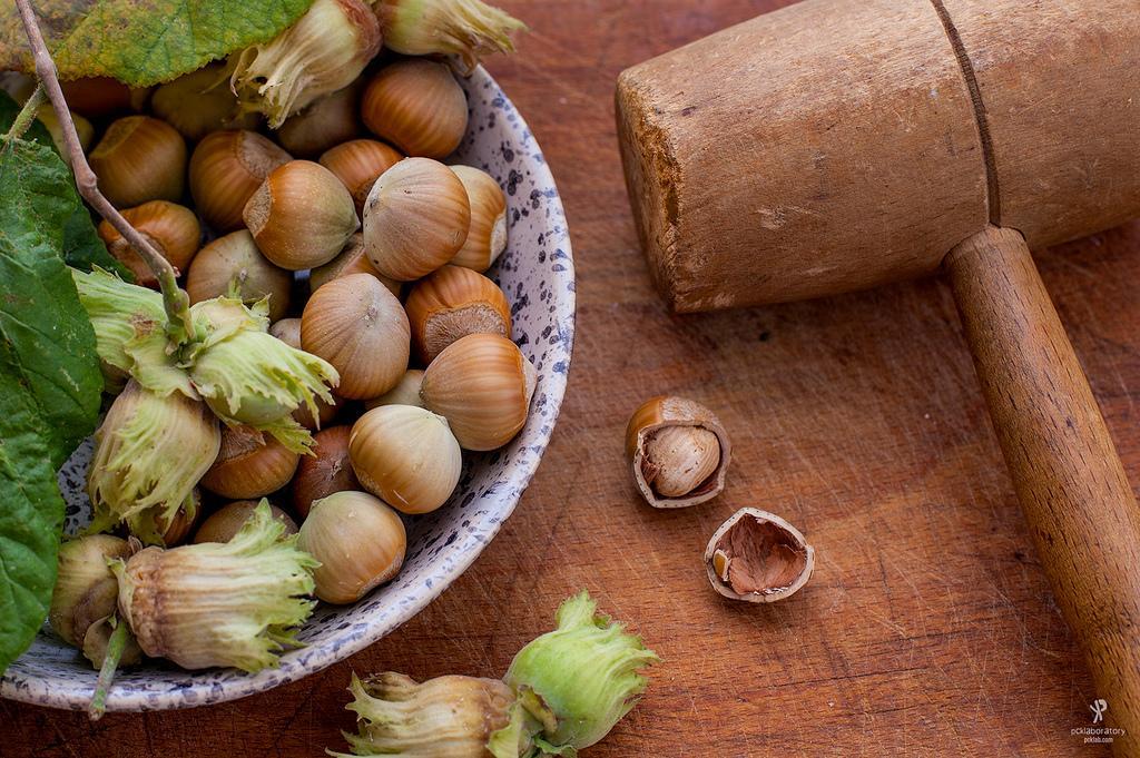 Hazelnuts (Yane Naumoski)